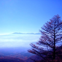 *高峰高原/天気の良い日には遥か遠くの山々まで見渡せます。