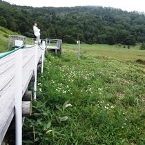 *周辺/咲く花によって季節ごとに違った風景を眺められます。