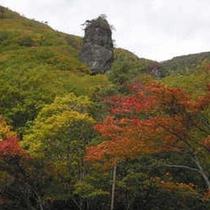 *周辺/秋模様に染まったねんぼう岩。