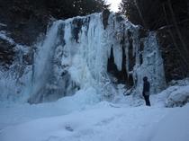 善五郎の滝 冬