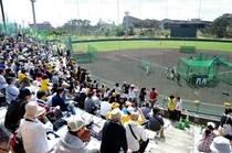 宜野座野球場