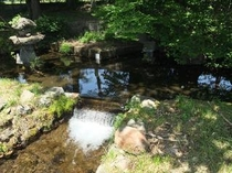 八ヶ岳の湧水