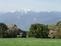 アスコット周辺から見た甲斐駒ヶ岳