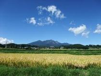 八ヶ岳の秋(アスコット周辺)