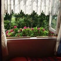 【リラックスツイン】*夏の窓辺*