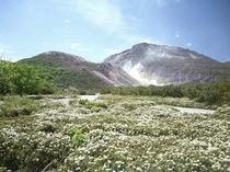 春の硫黄山