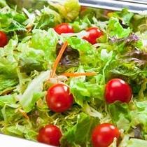 (朝食一例)野菜サラダ