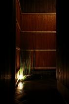 玄関ライト