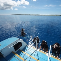 *西表島で一緒にダイビングを体験しませんか?