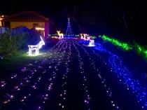 2016クリスマスイルミネーション ガーデン 2