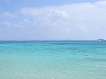 【周辺】広がるコバルトブルーの美しい海。宮古諸島の綺麗な海と砂浜のビーチは一度は訪れたい場所です。