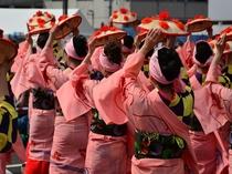 【山形花笠まつり】市内を花笠音頭にあわせた優雅な踊りでパレード!山形の真夏の夜を彩ります♪