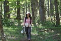 戸隠の森林植物園