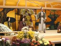 【たけふ菊人形】2万株以上の菊花が咲き誇る♪OSK日本歌劇団は、見ものですよ♪車で約55分☆