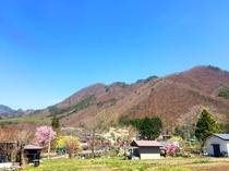 周辺の遅い春