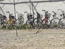 貸自転車 お好きな自転車をお選び下さい。