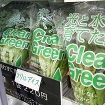 *【施設・売店】新鮮な野菜の販売を行っております。地元の素材を使って調理をするのも醍醐味です。