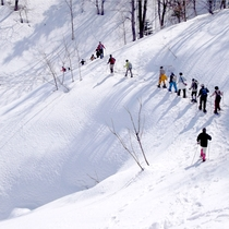 *スノーシュー/楽しく雪道を散歩しよう♪当館の隣の施設「アップルランド山の駅おとえ」にて無料貸出!
