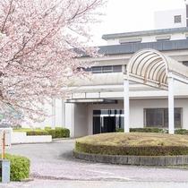 <外観>当宿の正面の桜がきれいに今年も咲きました