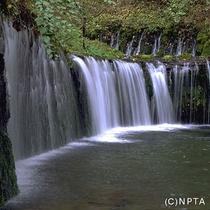 白糸の滝/軽井沢町