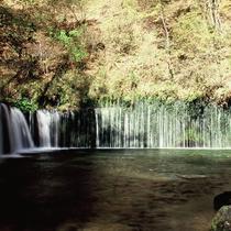 白糸の滝/紅葉