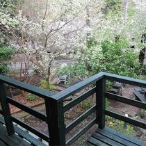 *一棟貸し客室一例/デッキからの眺め。爽やかな空気を吸ってひと息。