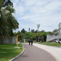 奥武山公園(徒歩10分) 走りやすいラバー仕様のランニングロード