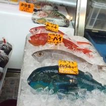 市場のカラフルな魚たち
