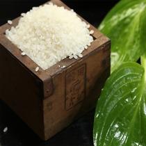 新鮮な白米