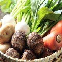 三浦の野菜ヘルシー会席