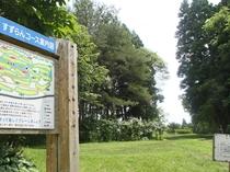 【北欧の杜公園】広い園内は子どもから大人まで楽しめる施設でいっぱい