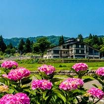 *【外観】季節ごとに様々な花々が咲き誇ります。