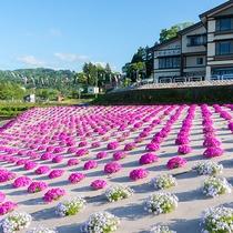 *【外観】春になると色鮮やかな花が咲き、目を楽しませてくれます。