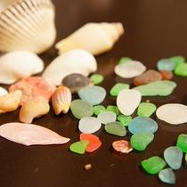 *砂浜を歩いて拾える海のお土産。桜貝はみつけたらいいことがあるかも?