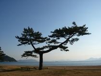 直島の風景5
