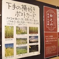*館内の様子/オリジナルグッズや松之山温泉に関する商品など、気になる情報が満載です。