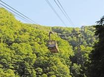 【ロープウェイ】大自然が作り出すダイナミックな景観が広がります。