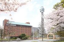 桜・メルパルクとマリンタワー
