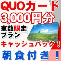 QUOカード3000円(朝食付)