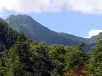 トレッキング 八ヶ岳