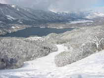 【ヤナバスノー&グリーンパーク】山頂
