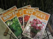 花いっぱいプラン【種】