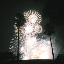 サンミ玄関から見る花火とヤシの木