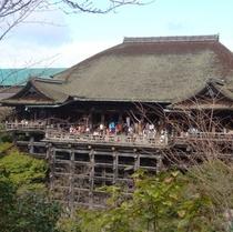 清水寺 正面から見る舞台