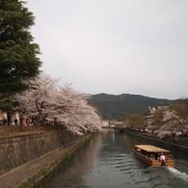京都市美術館横