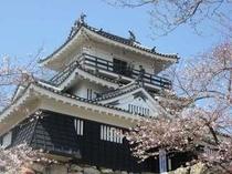 浜松城 〜春〜
