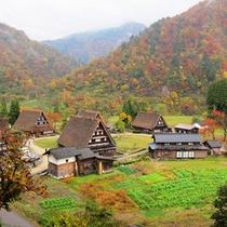 菅沼の四季 秋