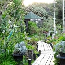 緑に囲まれた中庭