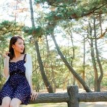 慶野松原の松林