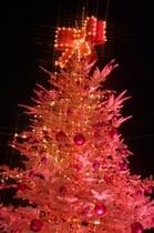 冬 (クリスマス)